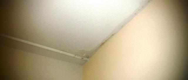 lekkage schade appartement